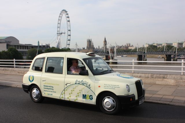 2010 Ubiquitous taxi advertising campaign for M&G - Globe Trotting, Trend Spotting & Let Talent Fly