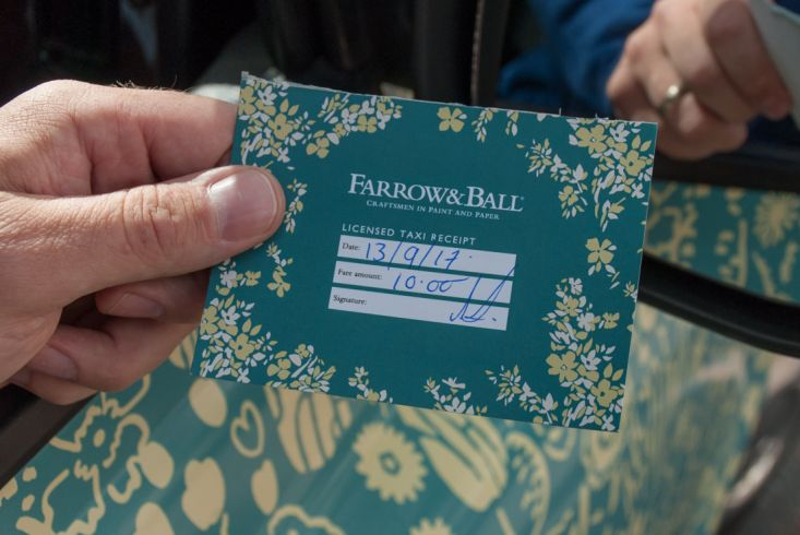2017 Ubiquitous campaign for Farrow & Ball  - #fabflorals
